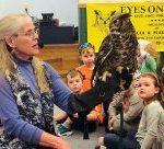Marcia Wilson: Live Owl Program